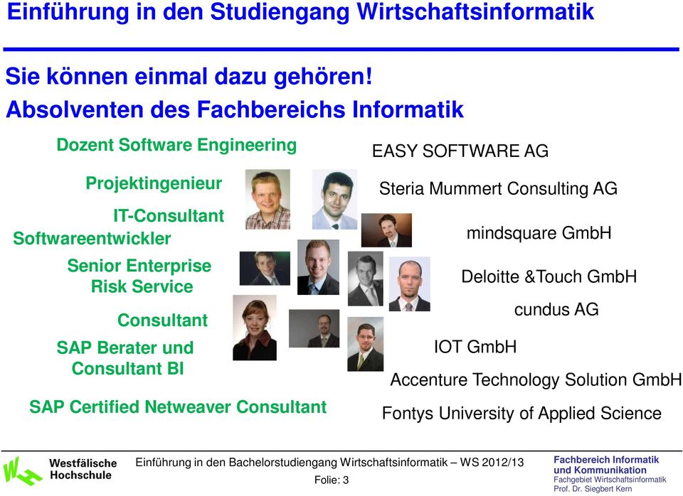 IT-Consultant Softwareentwickler Senior Enterprise Risk Service Consultant SAP Berater und Consultant BI SAP