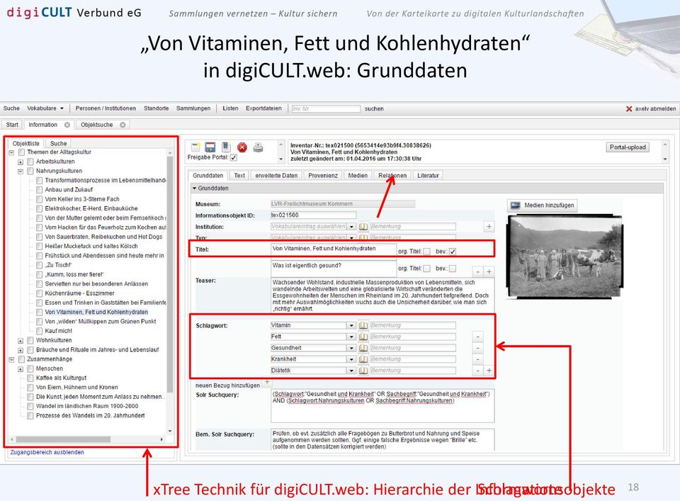 web: Grunddaten xtree Technik für