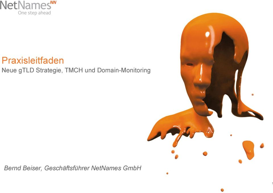 Domain-Monitoring Bernd