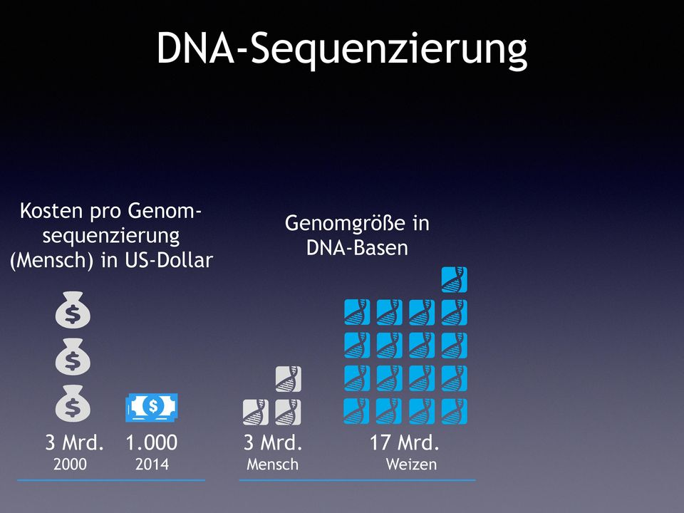 Genomgröße in DNA-Basen $ $ 3 Mrd. 1.