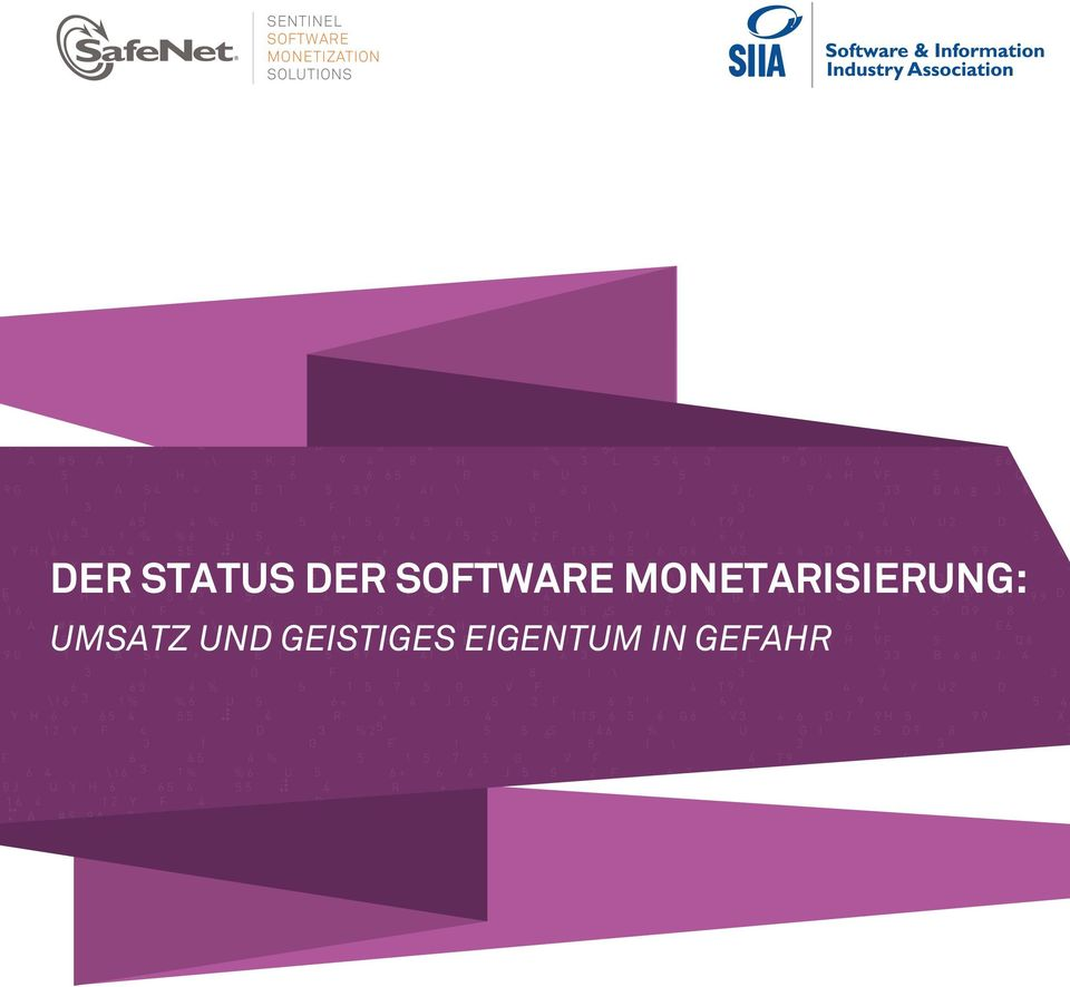 SOFTWARE MONETARISIERUNG:
