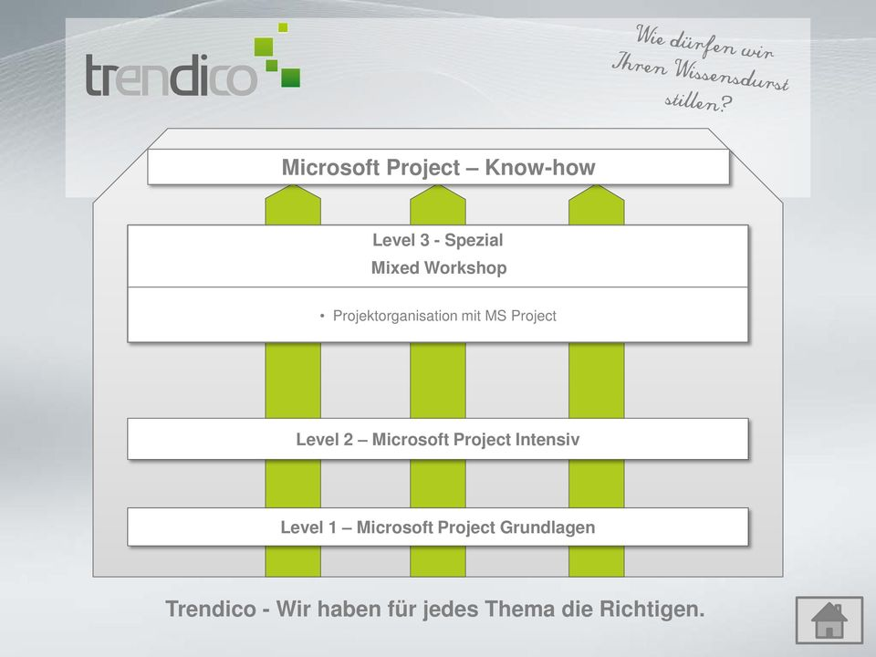 Projektorganisation mit MS Project Level