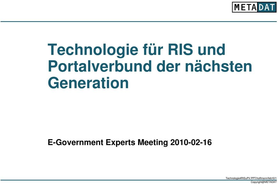 Generation E-Government Experts