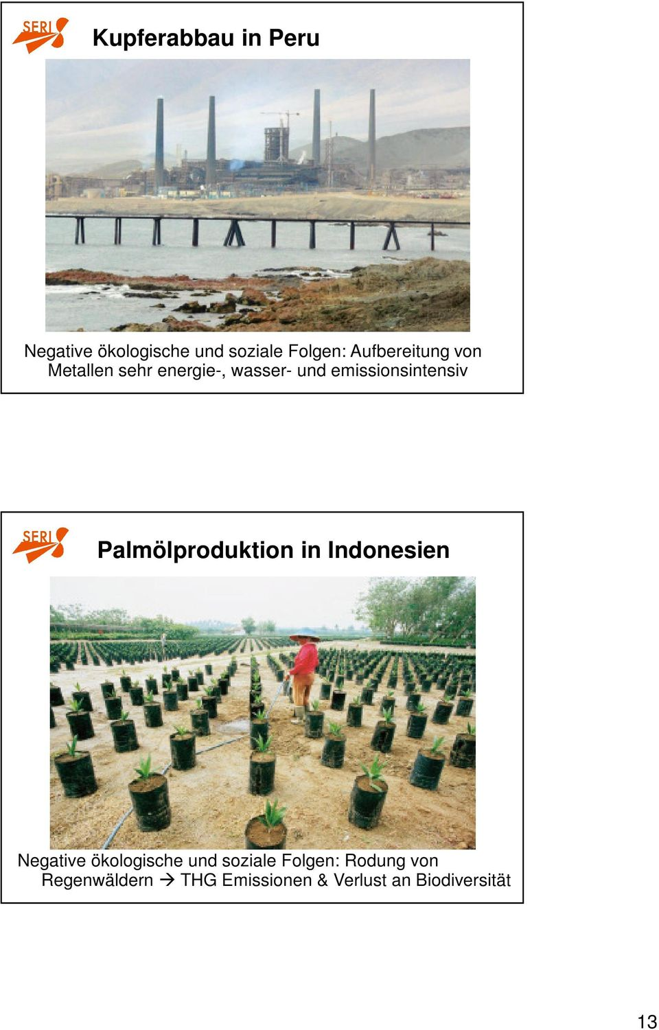emissionsintensiv Palmölproduktion in Indonesien Negative