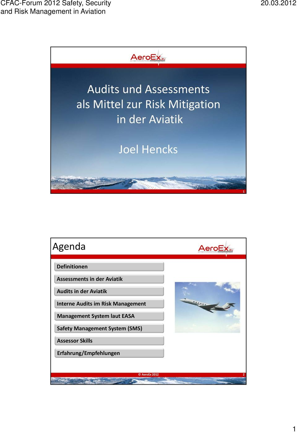 Aviatik Interne Audits im Risk Management Management System laut EASA