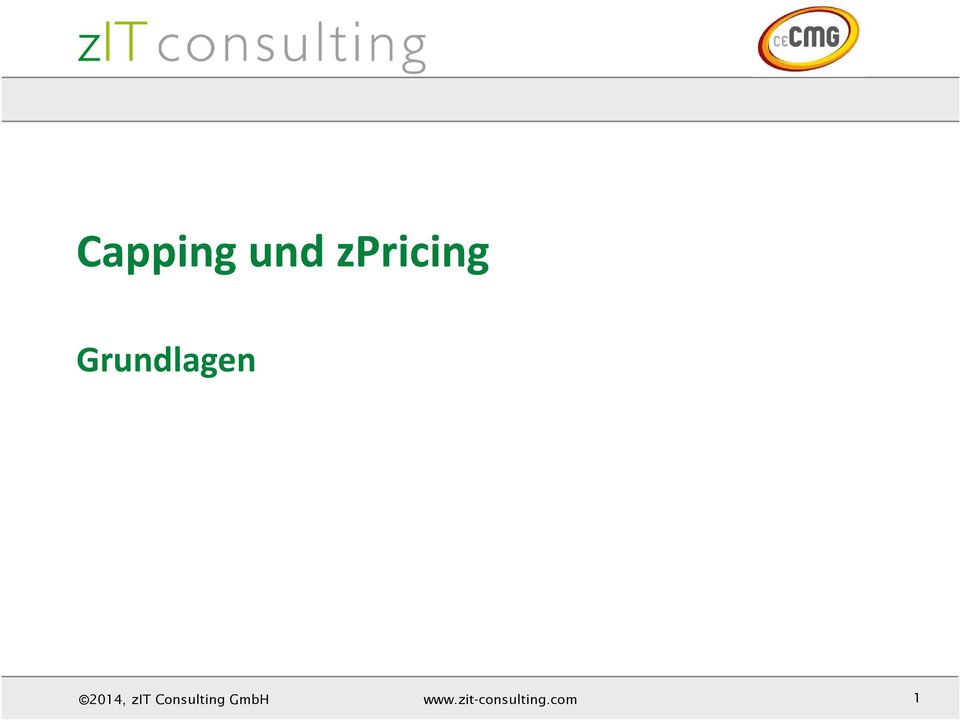 Consulting GmbH www.