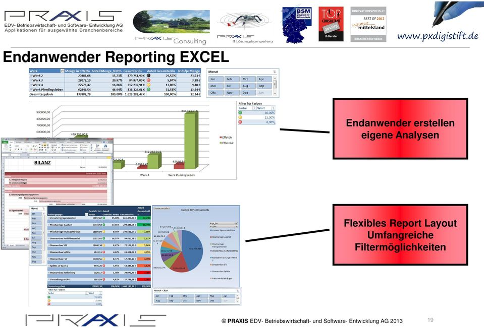Analysen Flexibles Report