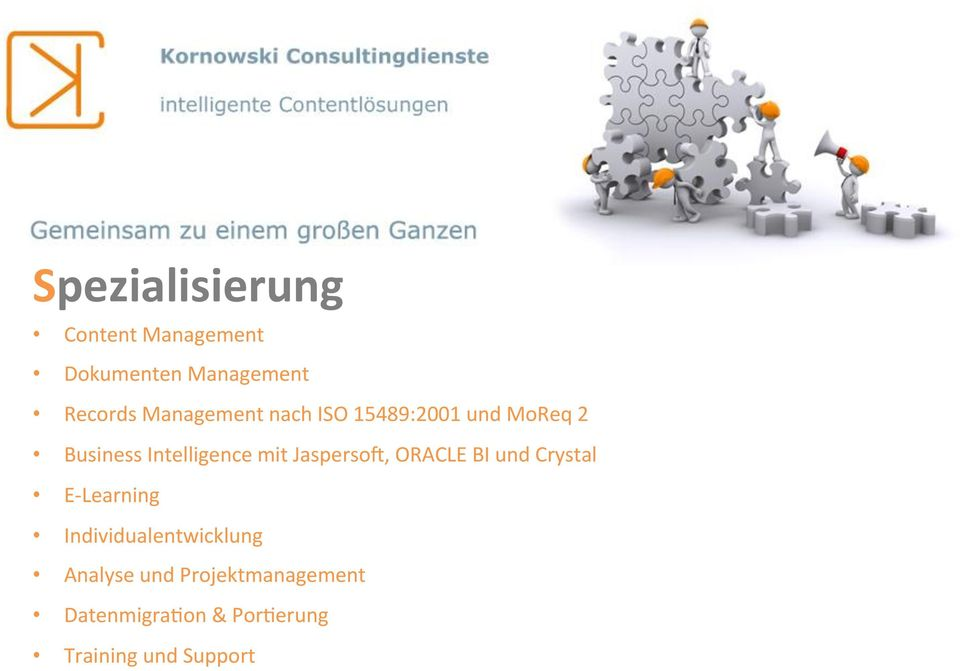JaspersoM, ORACLE BI und Crystal E- Learning Individualentwicklung