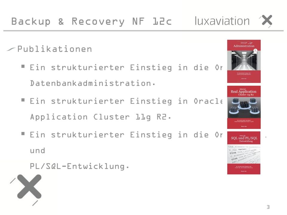 Ein strukturierter Einstieg in Oracle Real Application