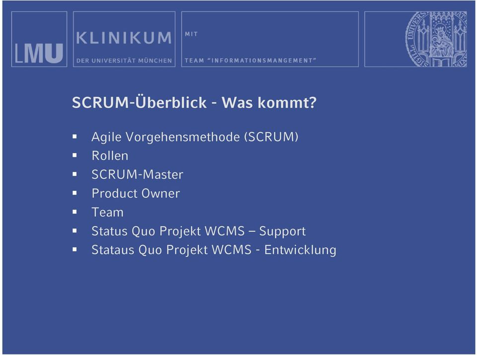 Product Owner Team Status Quo Projekt WCMS Support