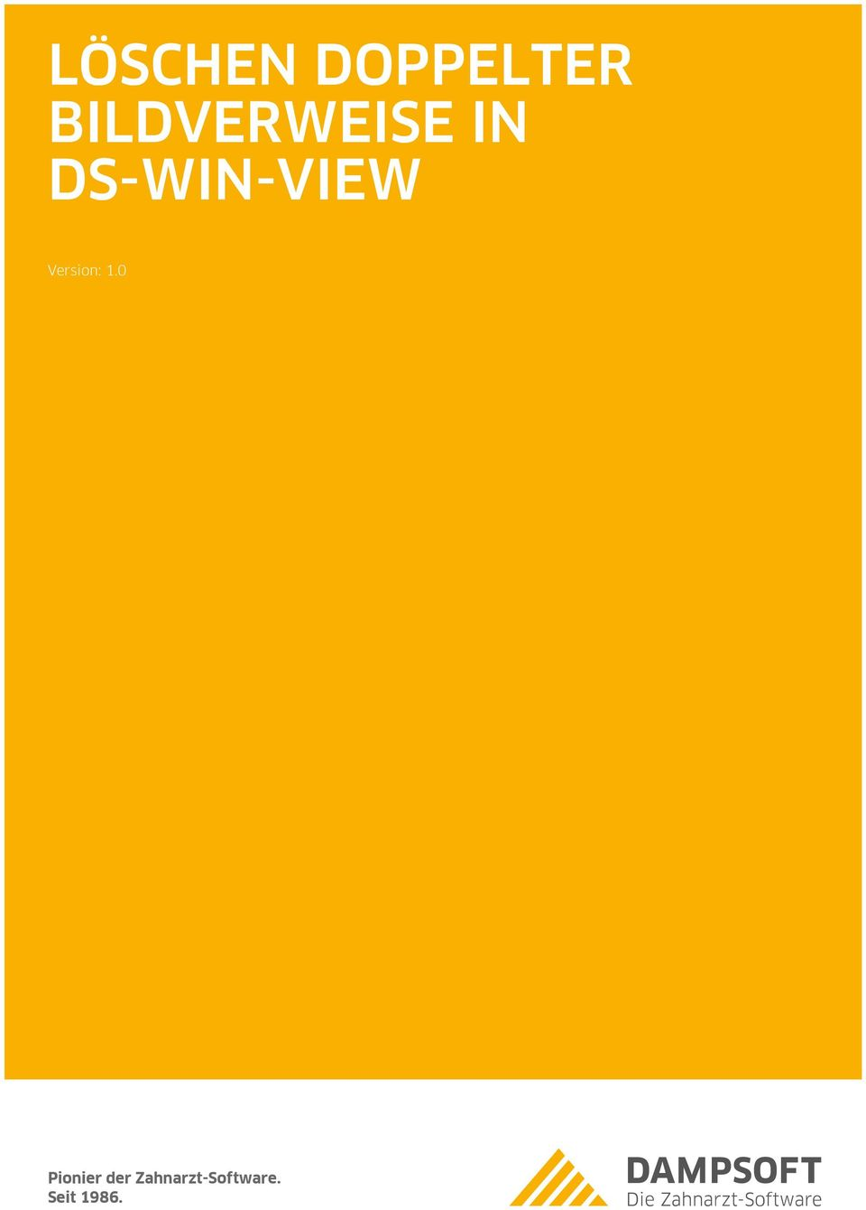 DS-WIN-VIEW Pionier