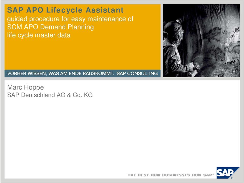 APO Demand Planning life cycle master