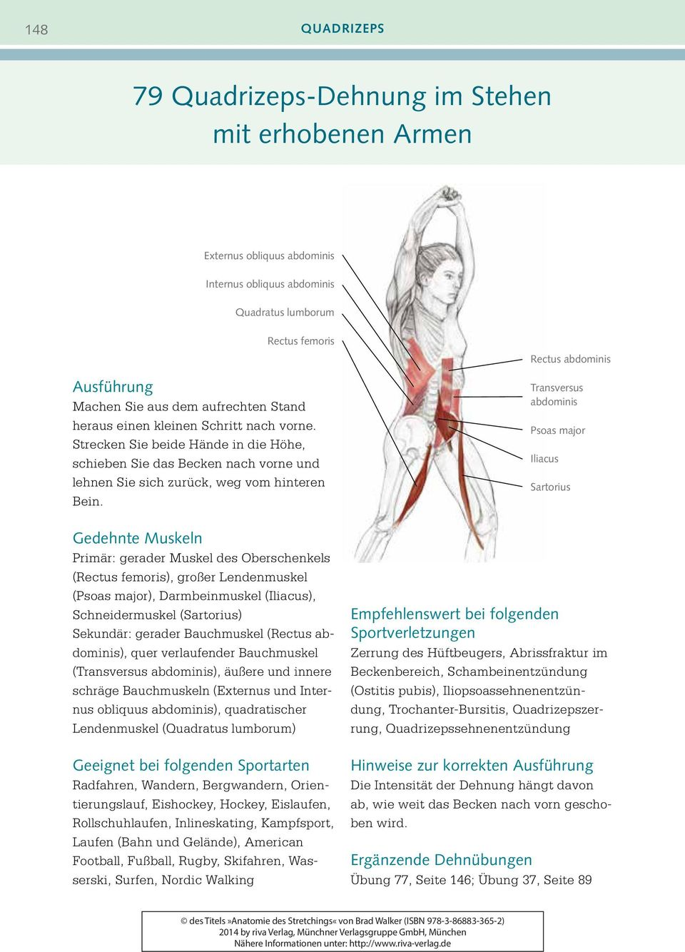 Anatomie. des Stretchings - PDF