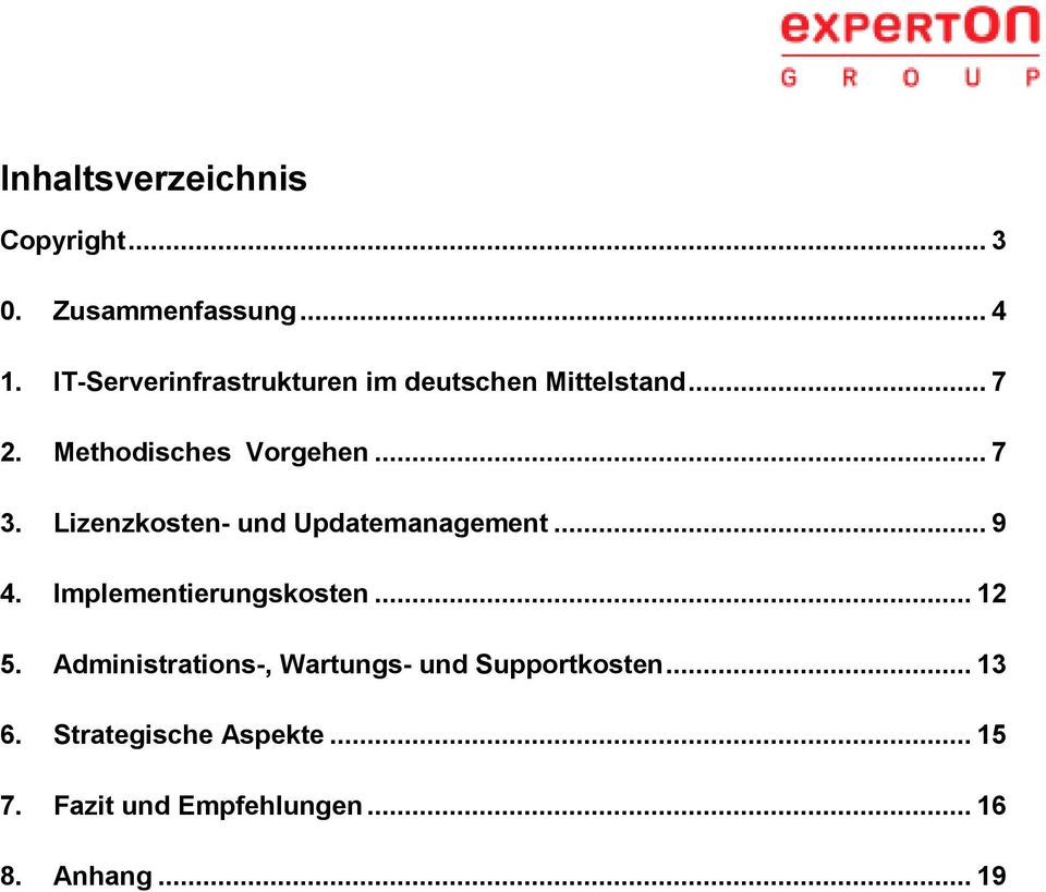 Lizenzkosten- und Updatemanagement... 9 4. Implementierungskosten... 12 5.