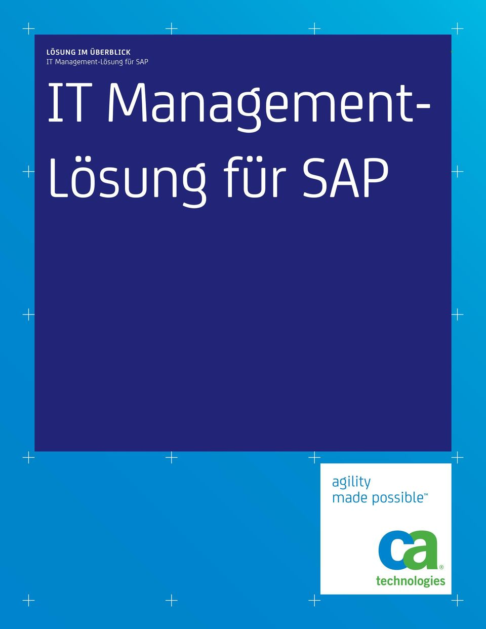 SAP IT Management-