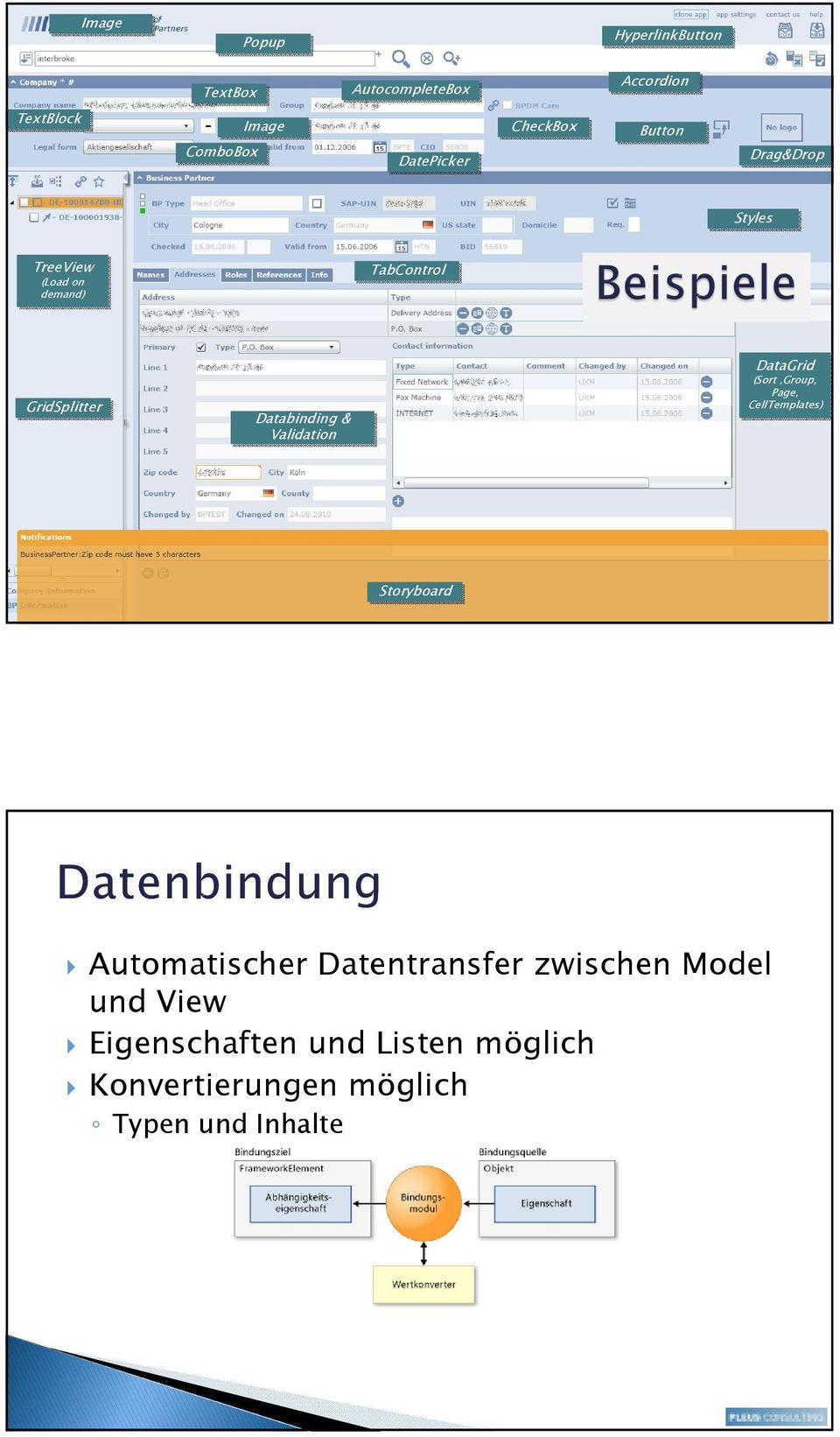 Databinding & Validation DataGrid (Sort,Group, Page, CellTemplates) Storyboard Automatischer