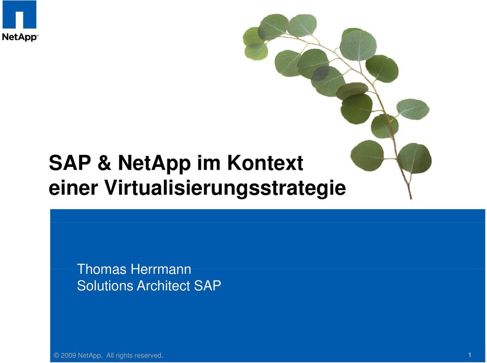 Herrmann Solutions Architect SAP