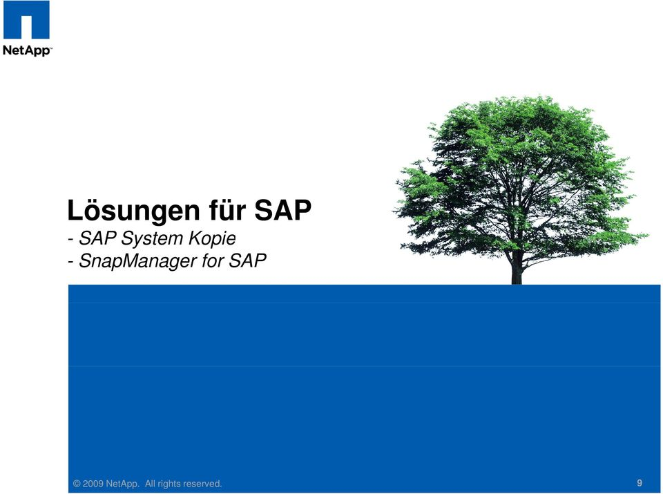 SnapManager for SAP