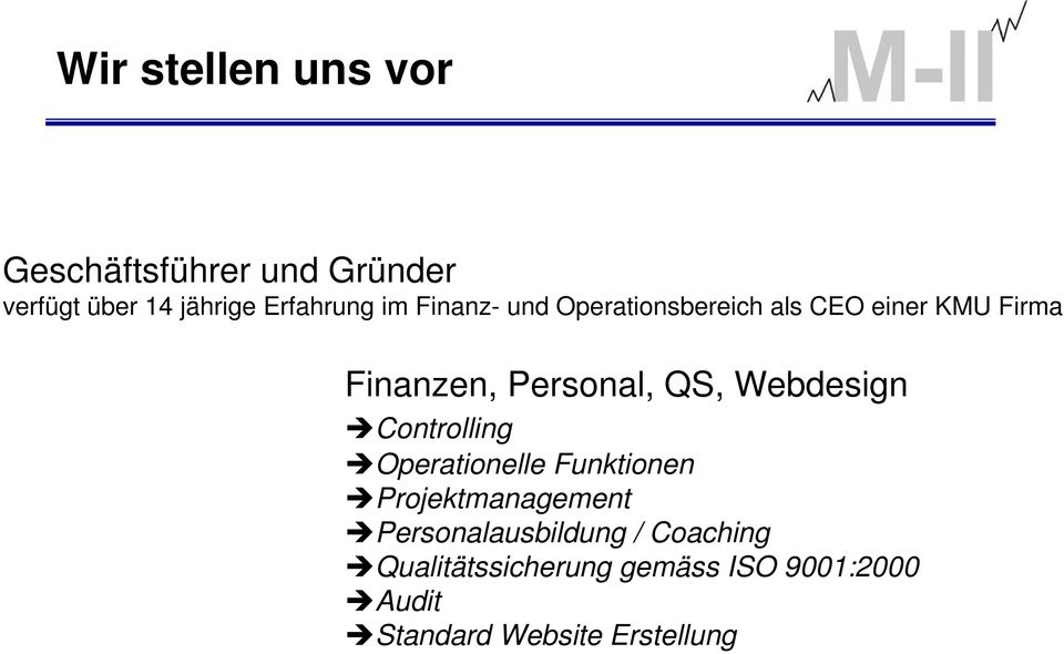 Webdesign Controlling Operationelle Funktionen Projektmanagement