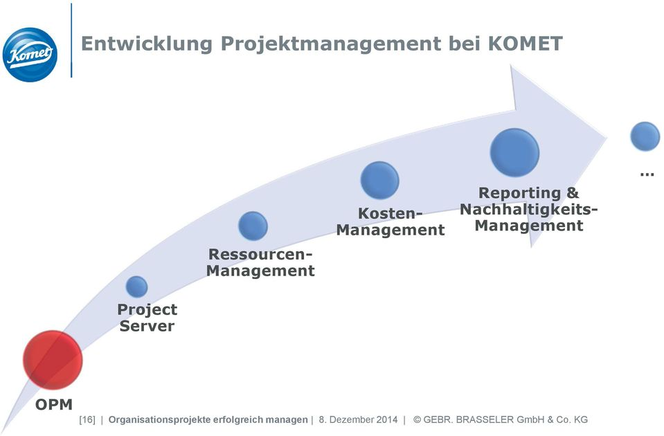 Management Project Server OPM [16] Organisationsprojekte