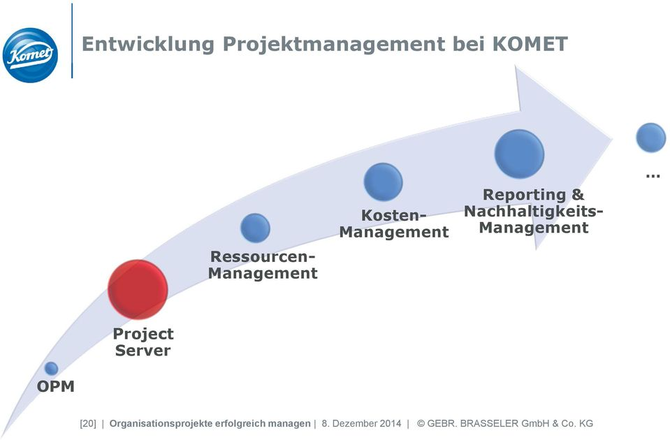 Management Project Server OPM [20] Organisationsprojekte