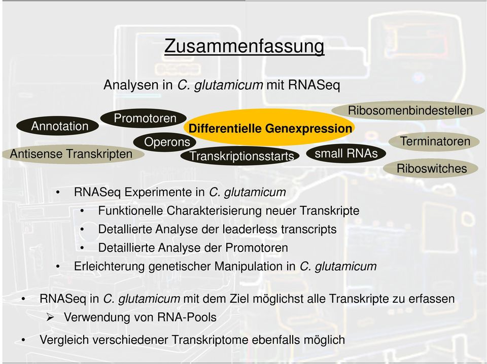 Transkriptionsstarts small RNAs Riboswitches RNASeq Experimente in C.