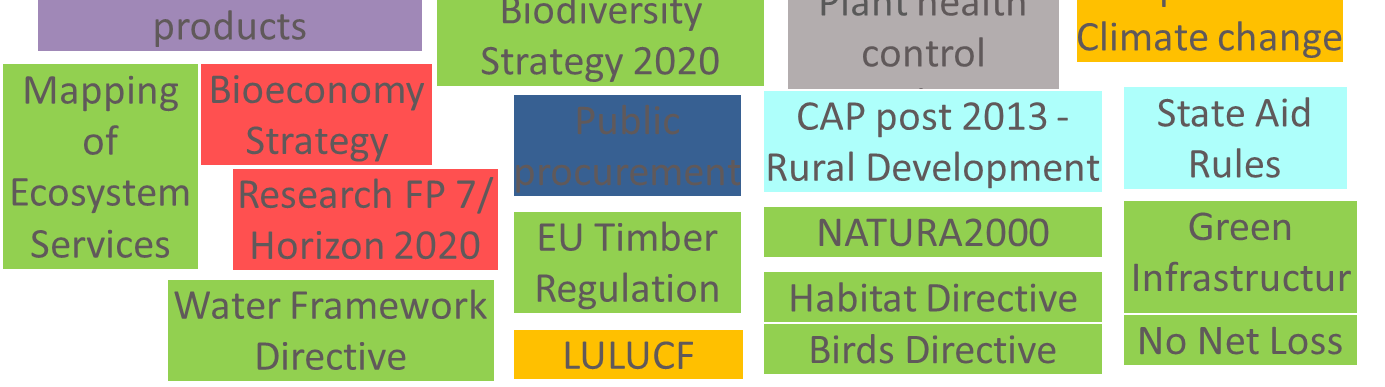 EU Forest Policy:
