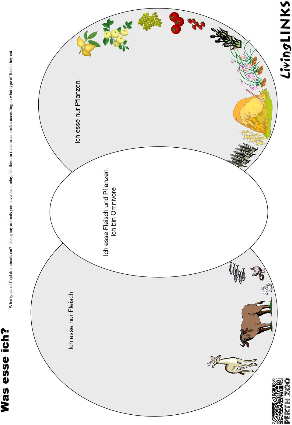 circles according to what type of foods they eat.