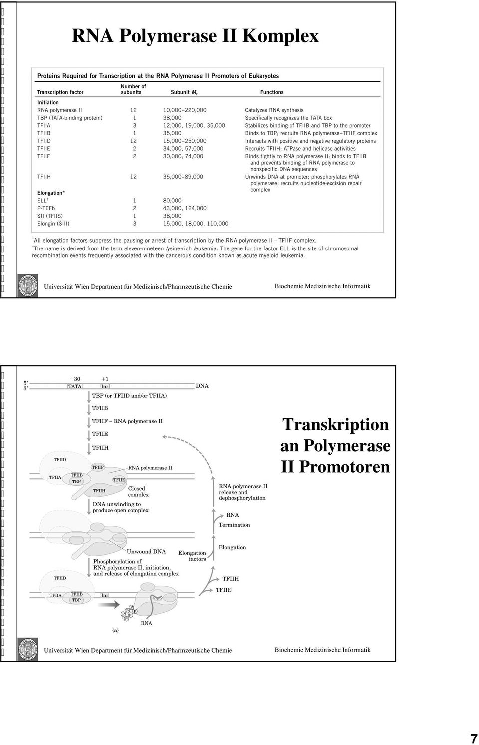 Transkription an
