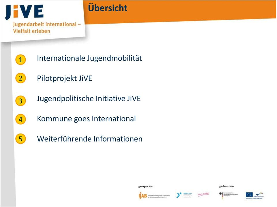 5 Jugendpolitische Initiative JiVE