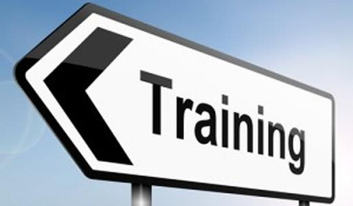 Vault Implementierung - Training Vault Key-User/End-Anwender Training Train the Trainer vs.