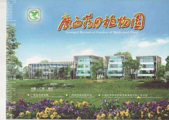 Partner in China Guangxi Botanical Garden of Medicinal Plants, Nanning - Guangxi - China http://www.nutraherbalsolutions.