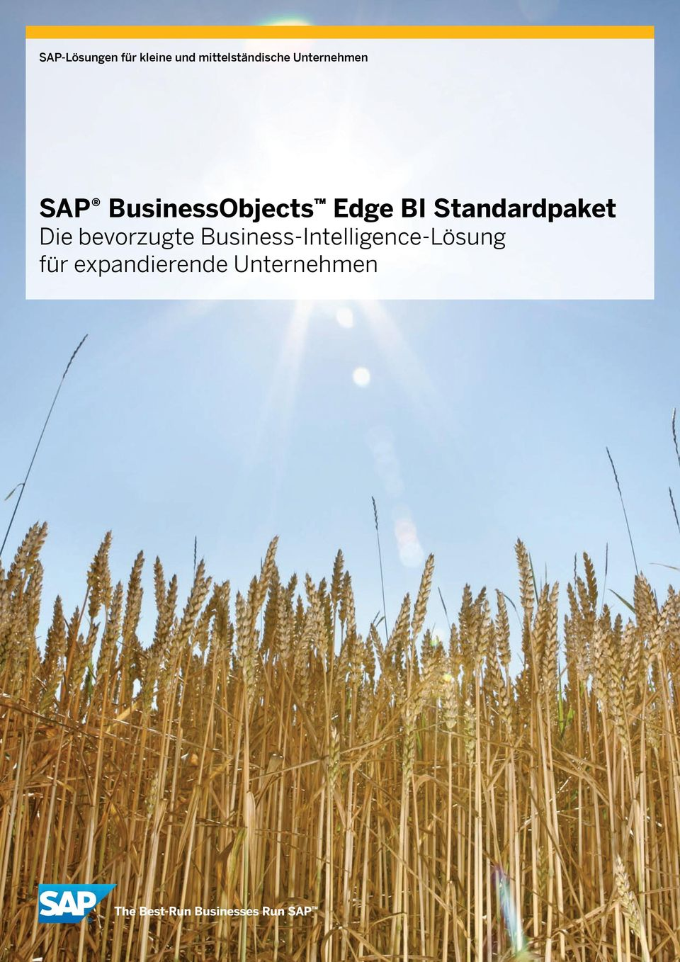 BusinessObjects Edge BI Standardpaket Die