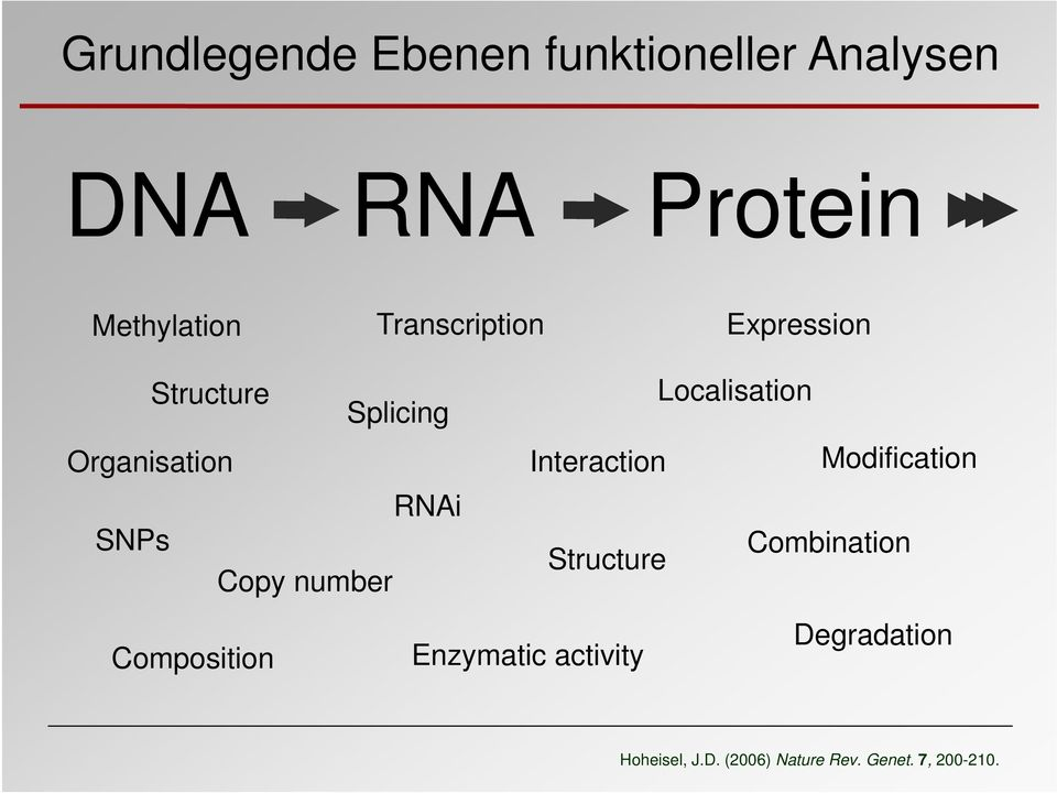 Interaction Modification RNAi SNPs Combination Structure Copy number