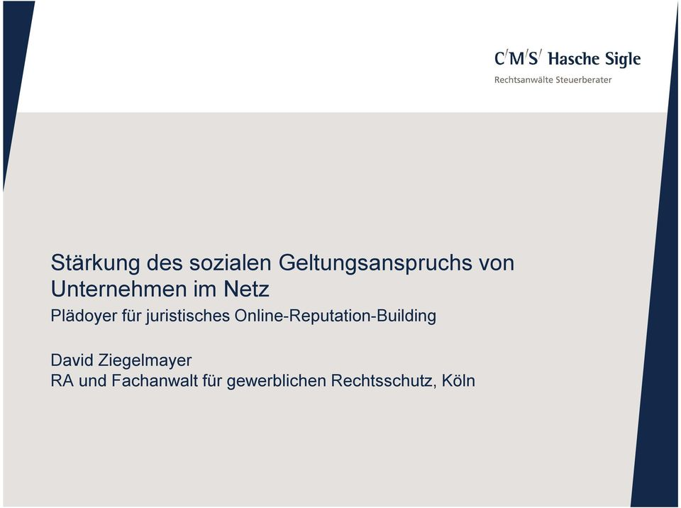 Online-Reputation-Building David Ziegelmayer