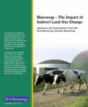 of a sustainable future Bioenergy the