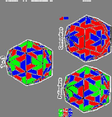 There are several reasons why viruses adopt icosahedral