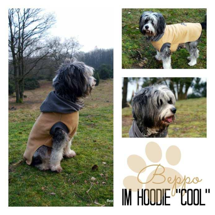 Freebook Hundehoodie Cool - PDF