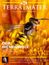 Schwankungsbreiten: Servus in Stadt & Land +/ 0,5 %, The Red Bulletin +/ 0,5