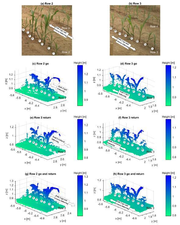 Chapter 4: Part III: 3-D reconstruction of maize plants using a time-of-flight camera 72 Figure 4-6: Path 2 section.