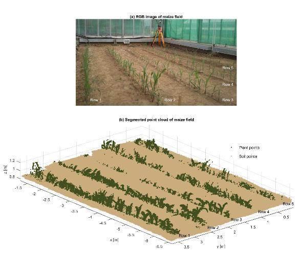 Chapter 4: Part III: 3-D reconstruction of maize plants using a time-of-flight camera 75 Figure 4-8: Maize field depicted as: (a) RGB image and (b) down sampled and segmented 3-D reconstruction going