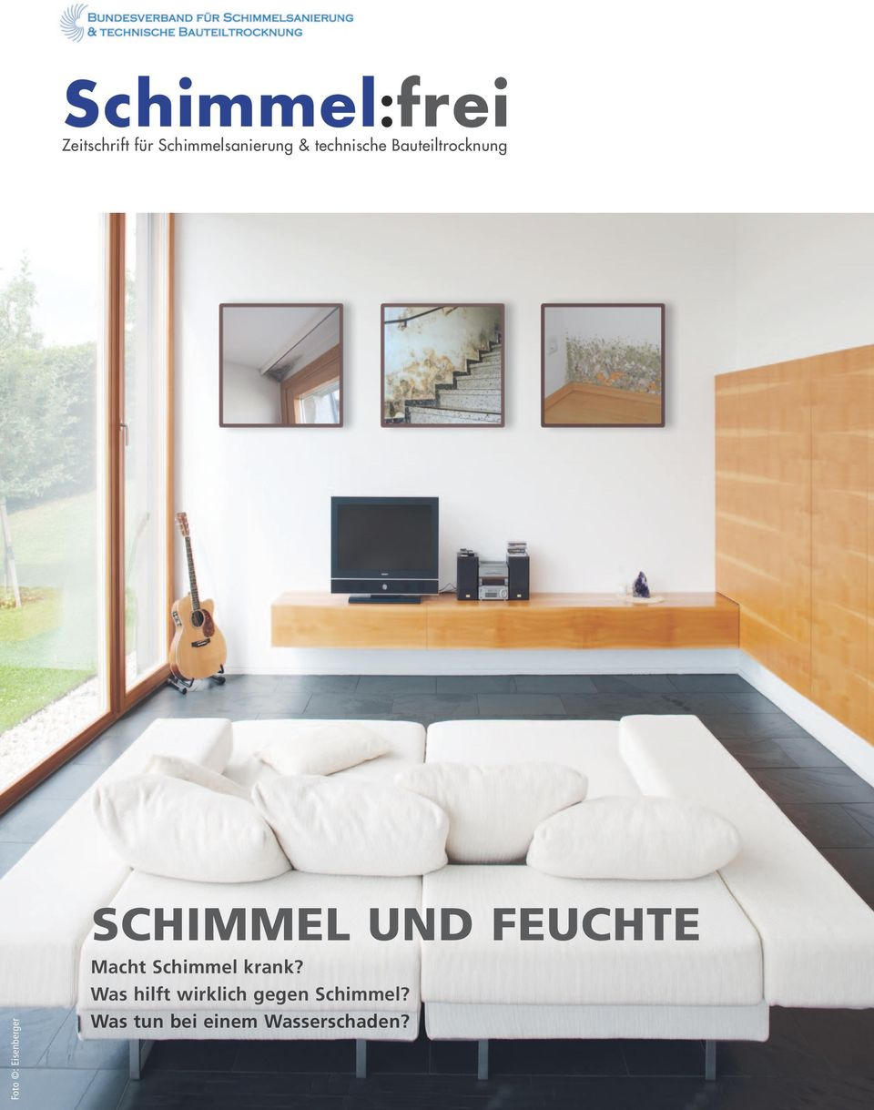 schimmel frei schimmel und feuchte macht schimmel krank was hilft wirklich gegen schimmel was. Black Bedroom Furniture Sets. Home Design Ideas