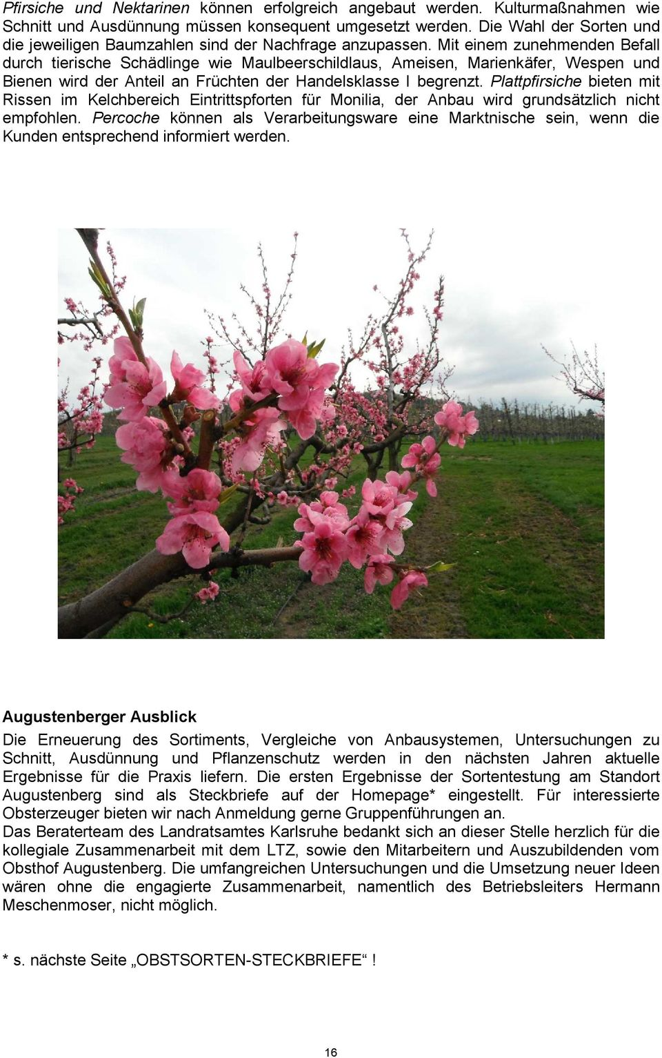 22  Augustenberger Obstbautag - PDF