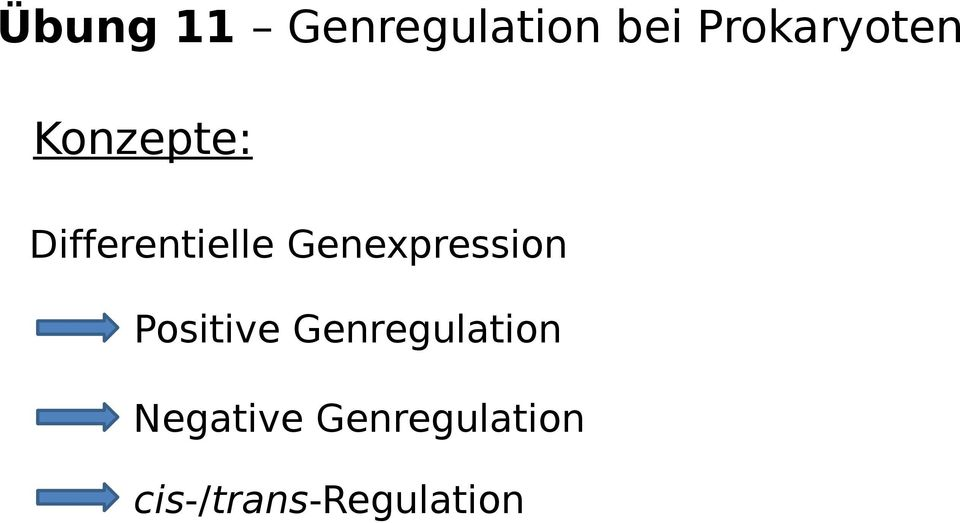 Genexpression Positive Genregulation